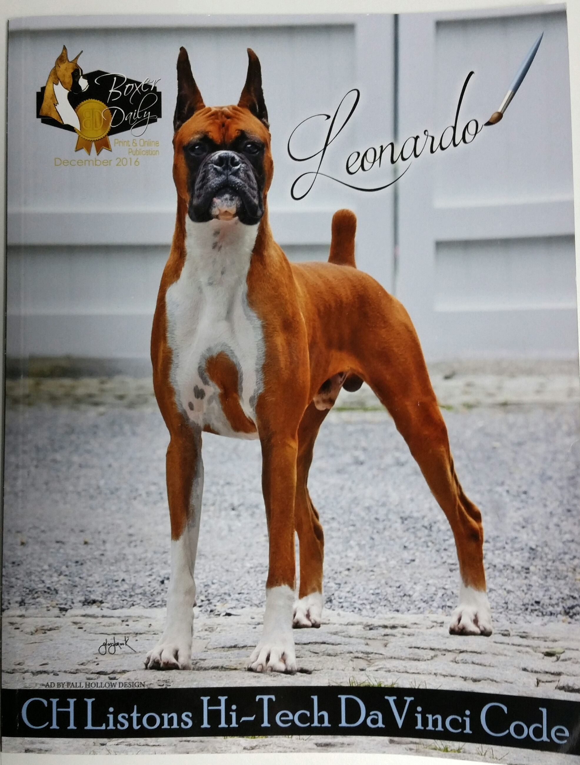 boxer ear crop magazine